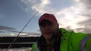 Рыболовная база на озере волго