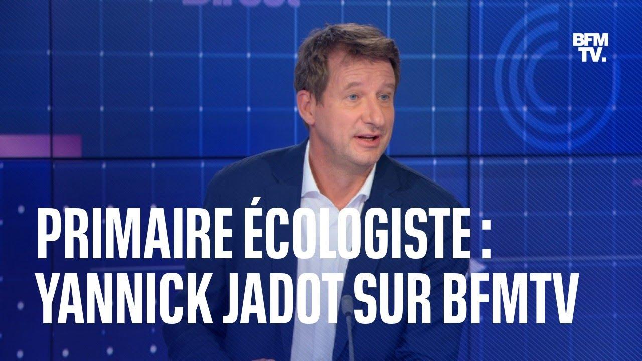 Primaire écologiste: l'interview de Yannick Jadot dans Calvi 3D en intégralité