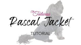 Make Your Own Dog Clothes - Dog Clothes Tutorial  - Rascal Jacket PDF Sewing Pattern Tutorial