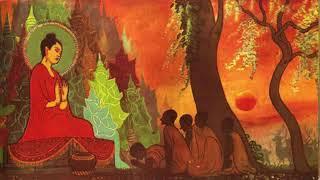 22 câu chuyện về lời dạy của Đức Phật nghe thấm thía từng lời, rất hay, nên nghe