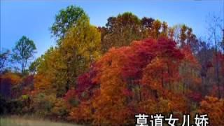 跨界歌王 第13期 20160820 刘 涛 Tamia Liu 牧羊曲 (HD)