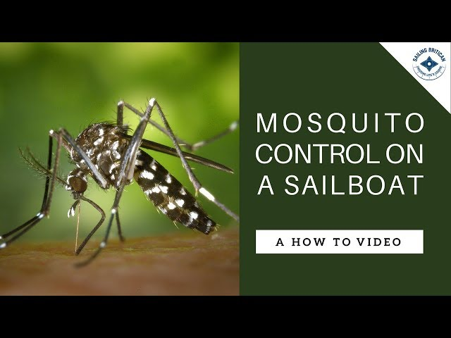 Mosquito Control on a Sailboat - 10 Top Tips for Sailors   Sailing Britican