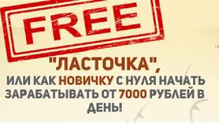 Курс ЛАСТОЧКА скачать бесплатно