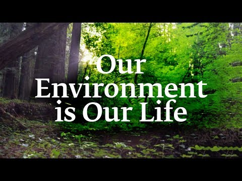 Download Our Environment is Our Life