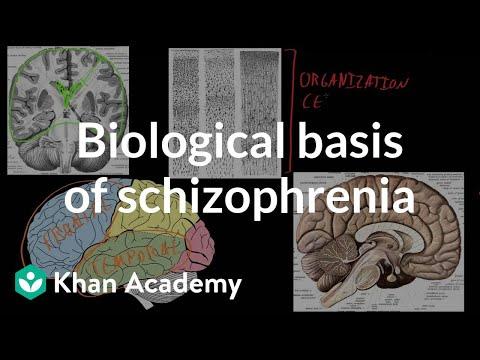 Biological basis of schizophrenia (video) | Khan Academy