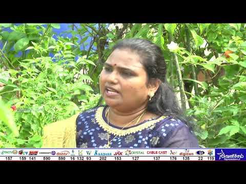 En Veetu Thottathil - Epi - 192| Terrace-and-Roof Gardening | Videos | Velicham Tv Entertainment