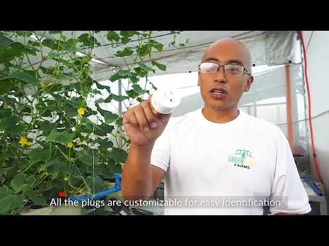 The Modern Smart Greenhouse (Using Smart Switches)