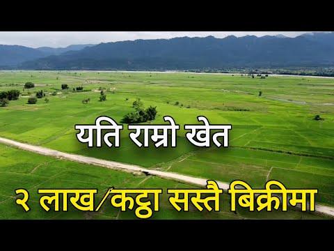 १४ मिटर पिच हुन लागेको रोड नजिकै |sasto khet bikrima | agriculture | ghar jagganepal| by 3rdeye33 |