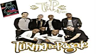 cd turma do pagode 2012 completo gratis