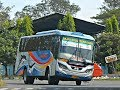 AKSI Manuver TAJAM 30an Bus Sugeng Rahayu Di Tikungan MOJOKERTO.