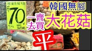 Best Buy! Korean Dried Shiitake Mushrooms!HK 超平韓國大花菇 邊度買一睇就知道