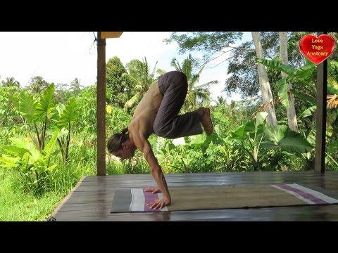 asana essentials intermediate postures  love yoga anatomy