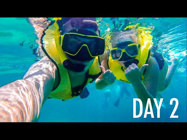 SNORKELING IN THE BAHAMAS!!
