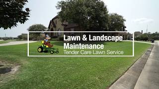 Professional Lawn and Landscape Maintenance Services in Sulphur, LA