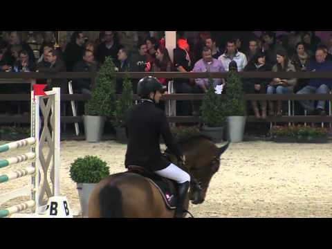 Stallion competition 6 years old horses BWP