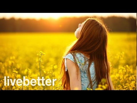 Happy Music – Great Positive Songs to help us Feel Awesome | Collecction: Nature