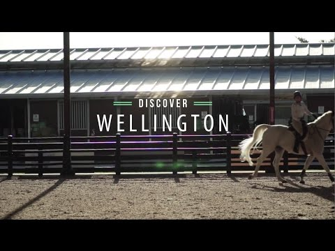 Wellington Video Thumbnail