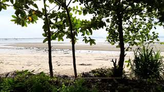 Beach Road Property - Nearly 10 Rai of Land for Sale in Popular Tourist Area of Nong Thaley