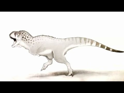 last african dinosaur found in mine in northern morocco