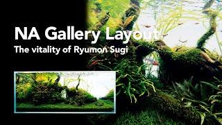 AdaView: The vitality of Ryumon Sugi [120cm]