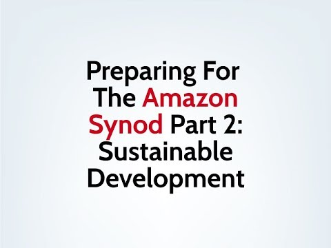 Preparing For The Amazon Synod Part 2: Sustainable