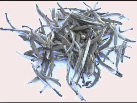 Video Health benefits of White Tea