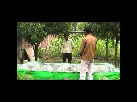 Eliminazione efficace di vermi