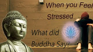 How to Control Stress || Buddha's Teachings for Dealing with anxiety