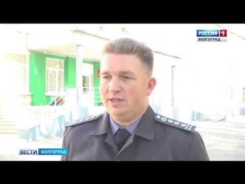 Об обнаружении сотрудниками Россельхознадзора карантинного сорняка в парках Волгоградской области