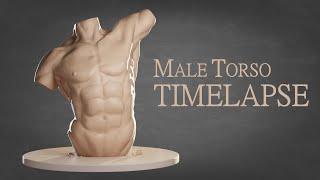 Sculpting A Male Torso (2019) - Blender Timelapse