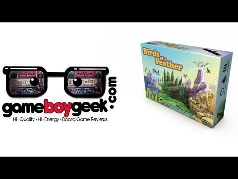 The Game Boy Geek Reviews Birds of a Feather