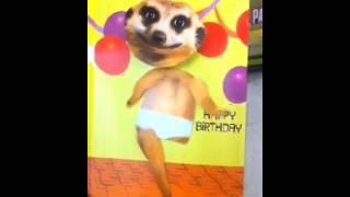 Sexy Underwear Dance