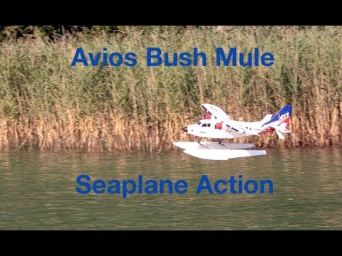 avios-bush-mule-seaplane