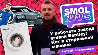 #SMOLNEWS #6: У рабочего завода угнали Bentley! Кот в стиральной машине. Россия на Олимпиаде