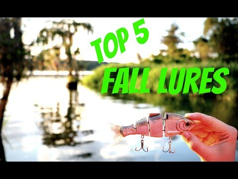 TOP 5 FALL FISHING LURES