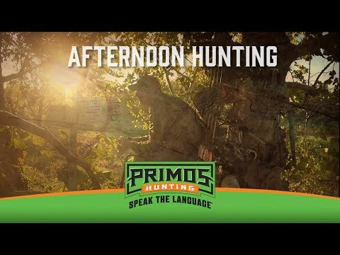 Afternoon Hunting in the Early Season for Deer video thumbnail