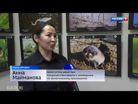 """В столице региона проходит фотовыставка """"Живая природа Алтая"""" (2021)"""