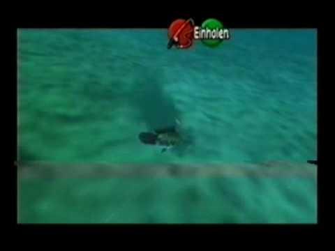 Zelda: OoT – Fishing Pond – Hyrulean Loach 35 pound