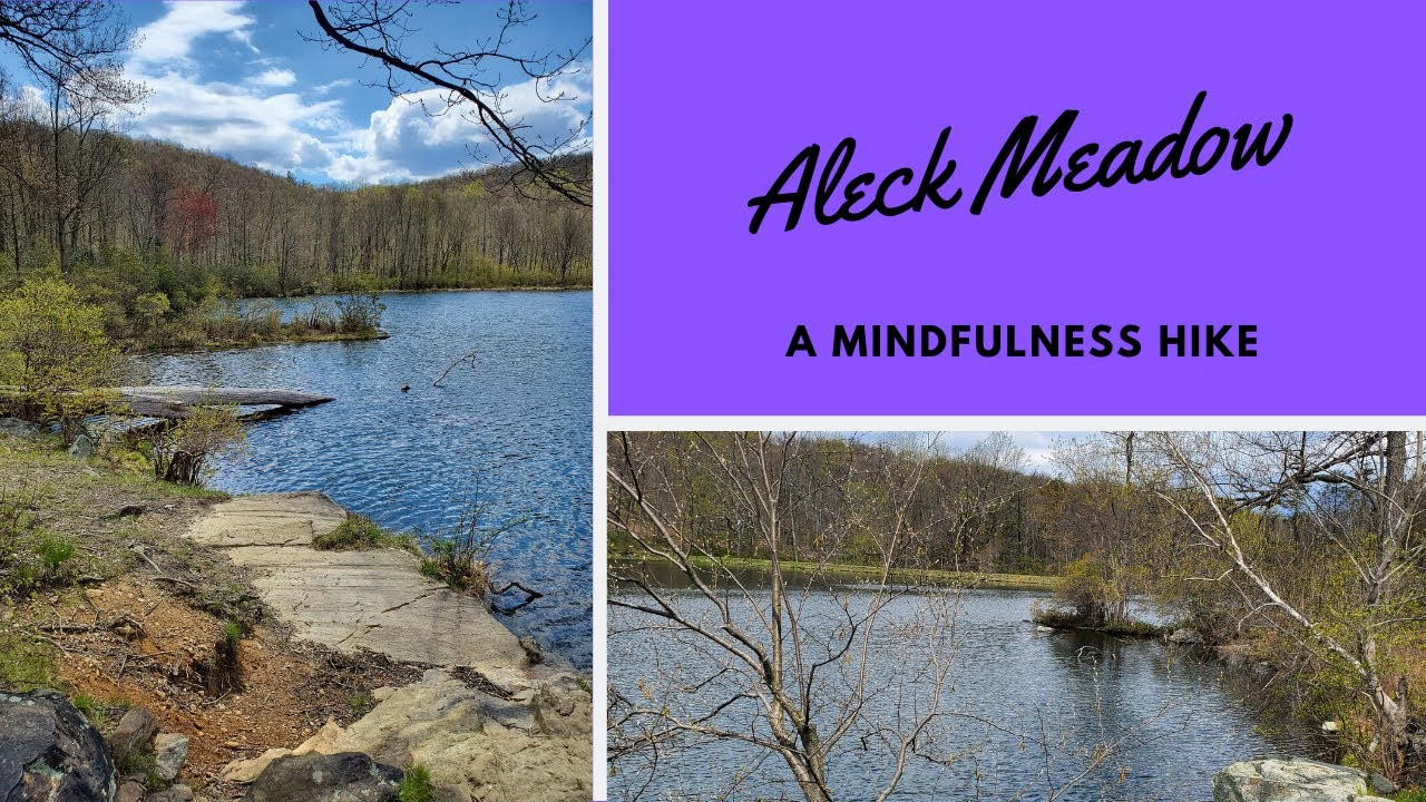 A Mindfulness Hike at Aleck Meadow