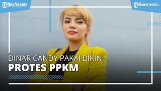 Protes PPKM Diperpanjang, Dinar Candy Pakai Bikini di Pinggir Jalan, Berakhir Diciduk Polisi