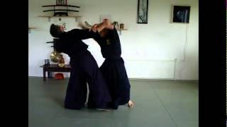 preview picture of video 'Seiryoku Ninjutsu Dojo Part2'