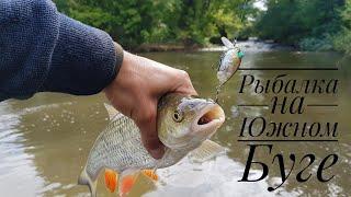Отдых с рыбалкой в южном направлении