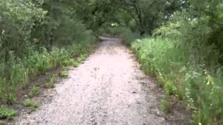 Eisenhower State Park 50cc Bike Trail