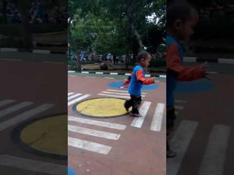 Video Ciri anak cerdas, aktif dan banyak tanya