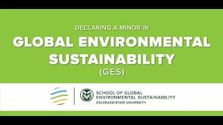 The GES Minor Overview 2020