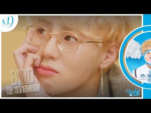 HA SUNGWOON (하성운) – BIRD | 8D AUDIO | USE HEADPHONES |