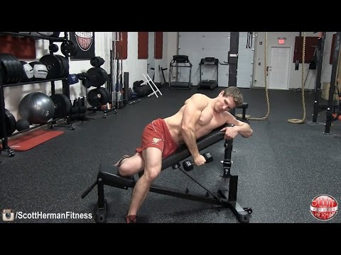 One Arm Dumbbell Rear Delt Fly On Incline Bench