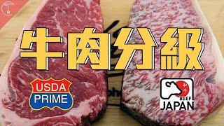 牛排如何分級?Prime跟日本和牛一較高下|克里斯丁聊料理