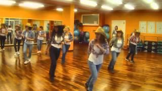 BABY LIKES TO ROCK IT TRACTORS LINE DANCE DANA