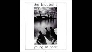 The Bluebells - 1984 - Young At Heart